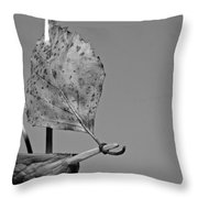 nutshell sailboat BW Throw Pillow