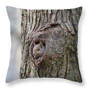 Nutty Squirrel Surprise  Throw Pillow