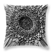 O Bw Throw Pillow