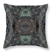Oa-4541 Throw Pillow