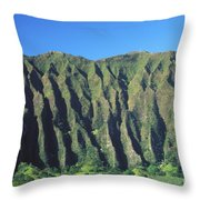 Oahu Rugged And Lush Throw Pillow