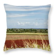 Oahu, Wailua Throw Pillow