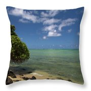 Oahu's East Coast 5 Throw Pillow