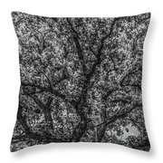 Oak Abstract Throw Pillow
