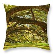 Oak Alley Tunnel Of Oaks Throw Pillow