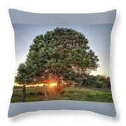 Oak At Sunset Throw Pillow