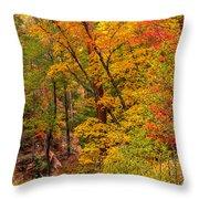 Oak Creek 1 Throw Pillow