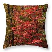 Oak Creek 3 Throw Pillow