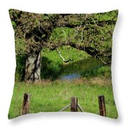 Oak Creek Guards Throw Pillow