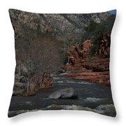 Oak Creek Surging Throw Pillow