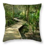 Oak Hammock Trail, Florida Throw Pillow