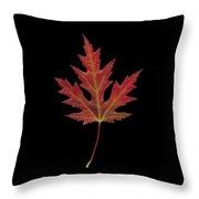 Autmn Leaf Throw Pillow