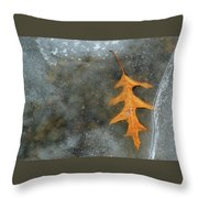 Oak Leaf In Ice  Throw Pillow