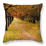 Oak Line Throw Pillow
