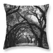 Oak Lined Drive Way, Coastal, South Carolina  Throw Pillow