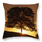 Oak Metal Throw Pillow