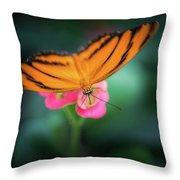 Oak Tiger Butterfly- 2 Throw Pillow