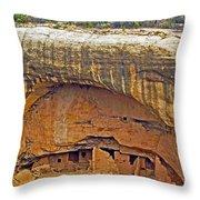 Oak Tree House - Mesa Verde Throw Pillow