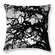 Oak Tree In Winter Detail - Amador County, California Throw Pillow