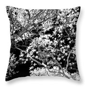Oak Tree Light Throw Pillow