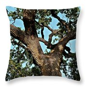 Oak Tree Two Throw Pillow