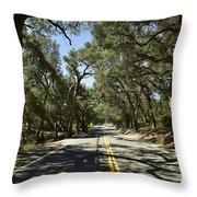 Oak Trees Along Live Oak Canyon Road Throw Pillow