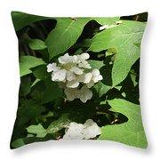 Oakleaf Hydrangea Floral Throw Pillow