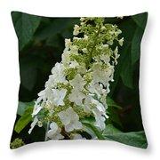 Oakleaf Hydrangea Throw Pillow