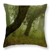Oaks Off The Trail Throw Pillow