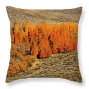 Oasis Of Beauty Throw Pillow