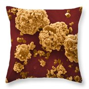 Oat Starch Grains Sem Throw Pillow