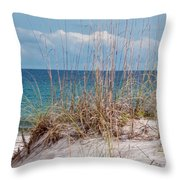 Oats On The Sand Throw Pillow