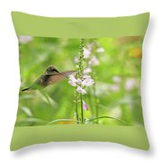 Obedient Attraction Throw Pillow