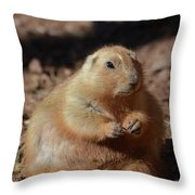 Obese Prairie Dog Sitting In A Pile Of Dirt Throw Pillow