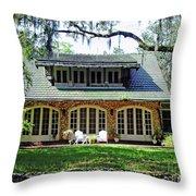 Ocala Limestone Home Throw Pillow