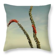 Ocatillo Throw Pillow