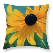 Ocealum 02 Throw Pillow
