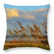 ocean/ Beach Throw Pillow