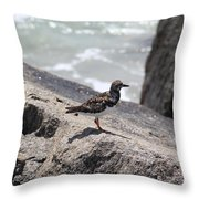 Ocean Bird Throw Pillow