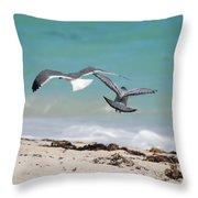 Ocean Birds Throw Pillow