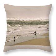 Ocean Edge Throw Pillow