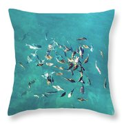 Ocean Marine Throw Pillow