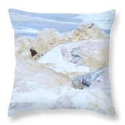 Ocean Rocks Throw Pillow
