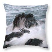 Ocean Sent Throw Pillow