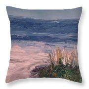 Ocean Trail Throw Pillow