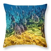 Oceans Below Throw Pillow