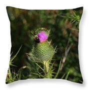 Oceanside Wildflower With Bee Throw Pillow