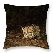 Ocelot Crouching At Night Looking For Food Throw Pillow
