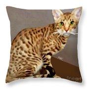 Ocicat Throw Pillow