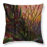 Ocotillo At Sunset Throw Pillow